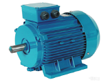 Three-phase induction motor's daily maintenance(1)