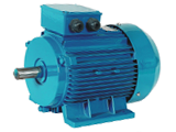 Three-phase induction motor's daily maintenance(2)