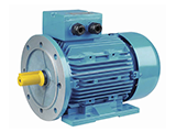 Three-phase AC induction motors(110-315kw)
